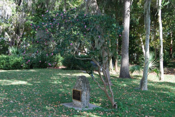 Wilmot Gardens Memorial Monument with Blooming Camellia