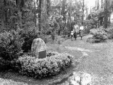 Historical Wilmot Gardens