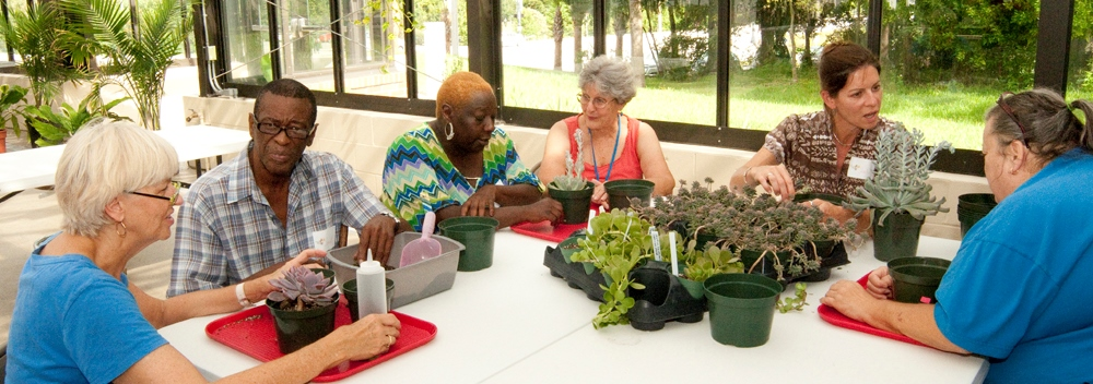 Therapeutic Horticulture Photo Gallery