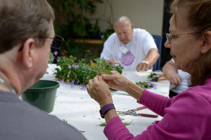 Therapeutic Horticulture Volunteer Training
