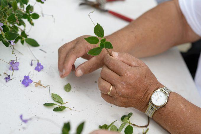 Therapeutic horticulture participant