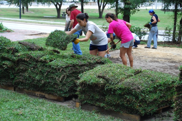 Student workday volunteers laying sod