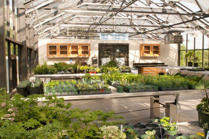 WBG greenhouse interior